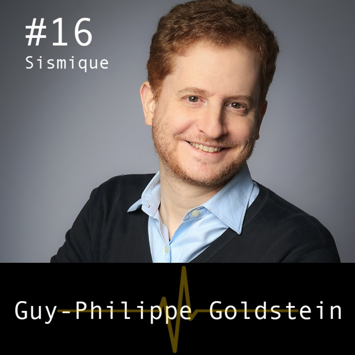 Le risque cyber - Guy-Philippe Goldstein