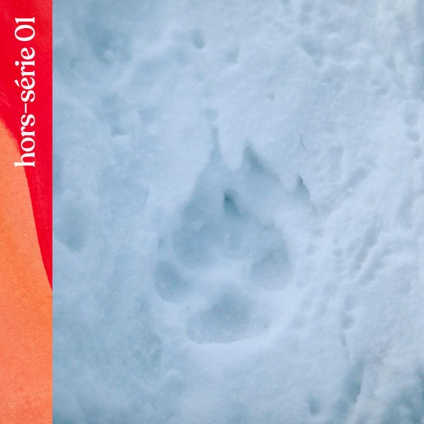 Hors-série #1 — Le pacte du loup, avec Jérémie Villet