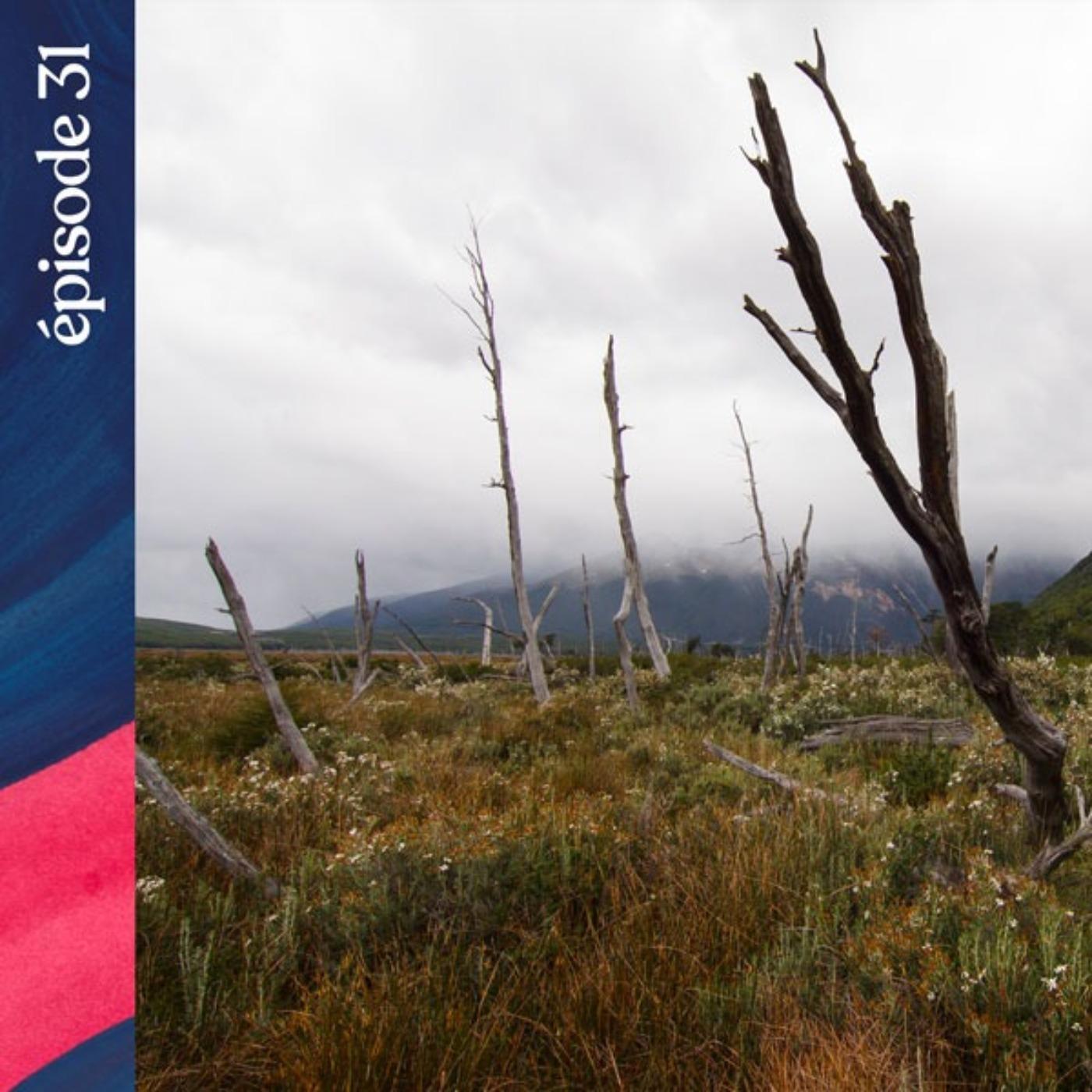 #31 — Les ombres de la Terre de Feu, avec Lauriane Lemasson