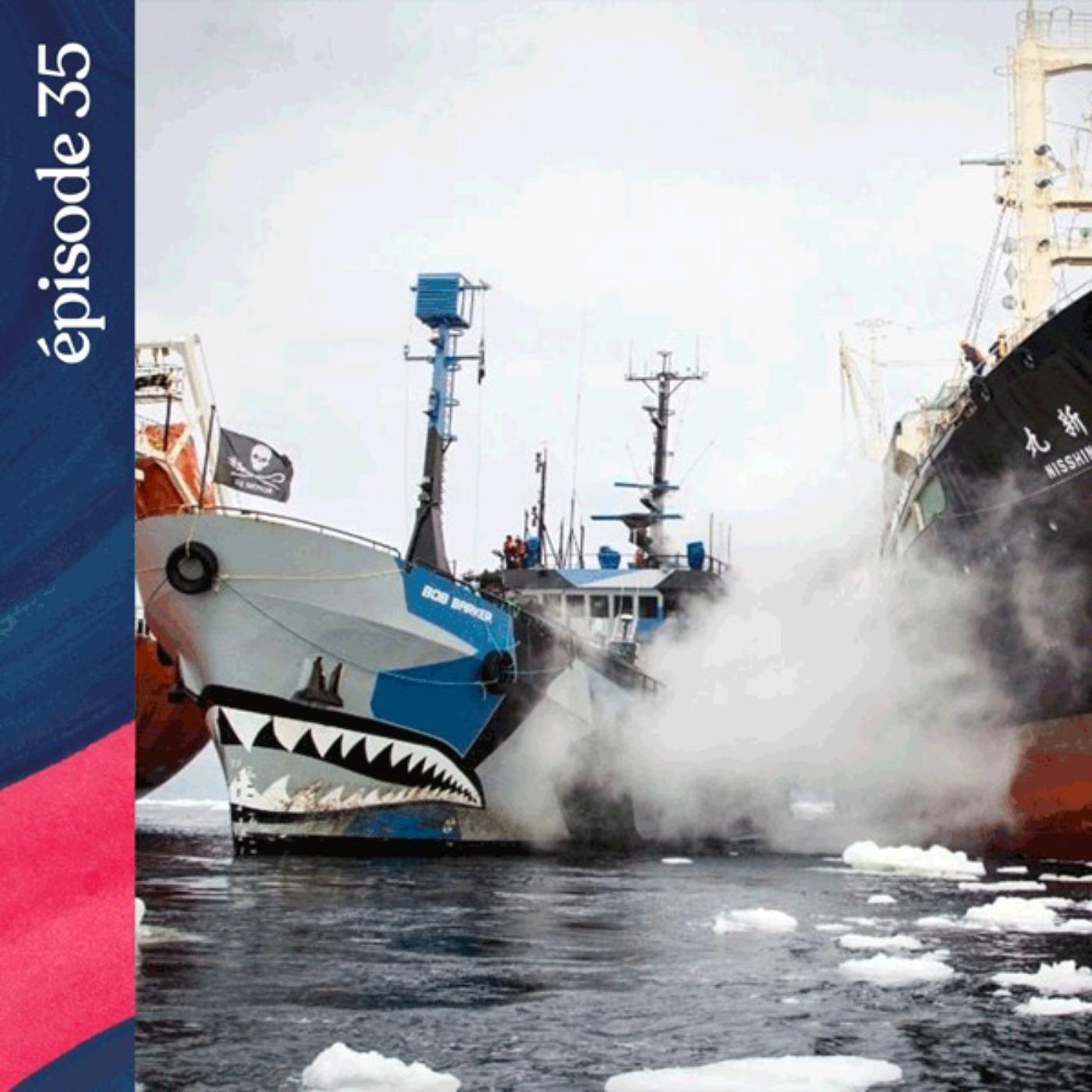 #35 — Pirates des mers australes, avec Lamya Essemlali