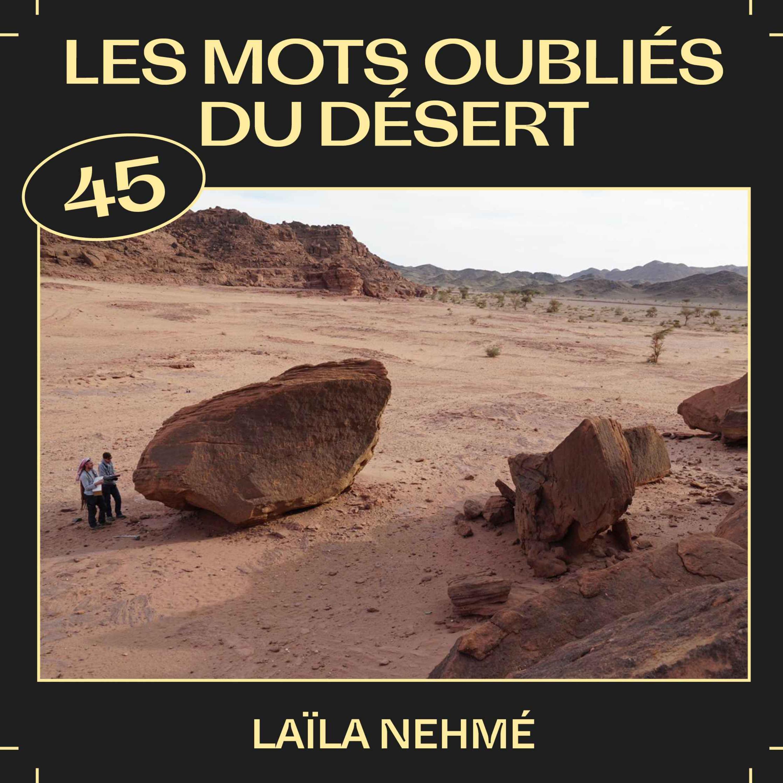 #45 —Les mots oubliés du désert, avec Laïla Nehmé