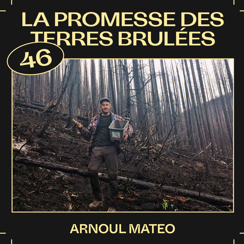 #46 — La promesse des terres brulées, avec Arnoul Mateo