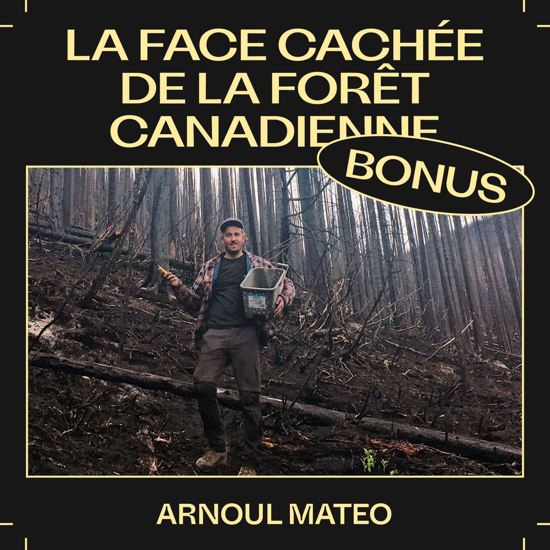 Bonus E46 — La face cachée de la forêt canadienne, avec Arnoul Mateo