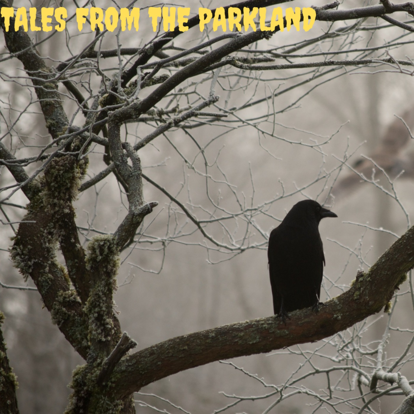 Ron McGillvray - Tales from the Parkland