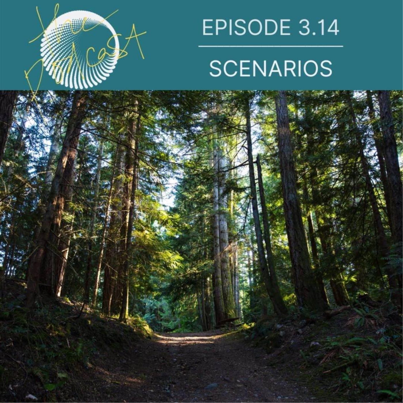 3.14: Scenarios: Choices inTransitions (Full Episode)