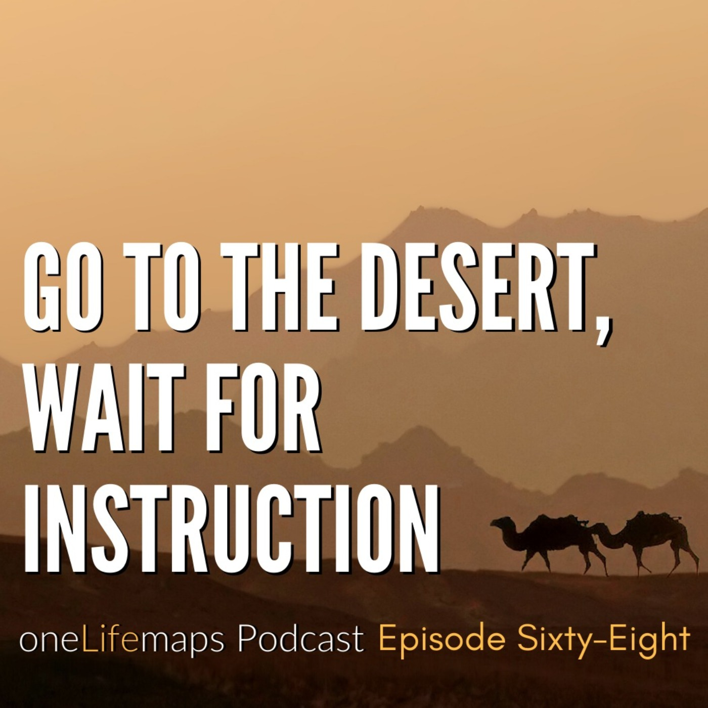 68. Go to the Desert, Wait for Instruction