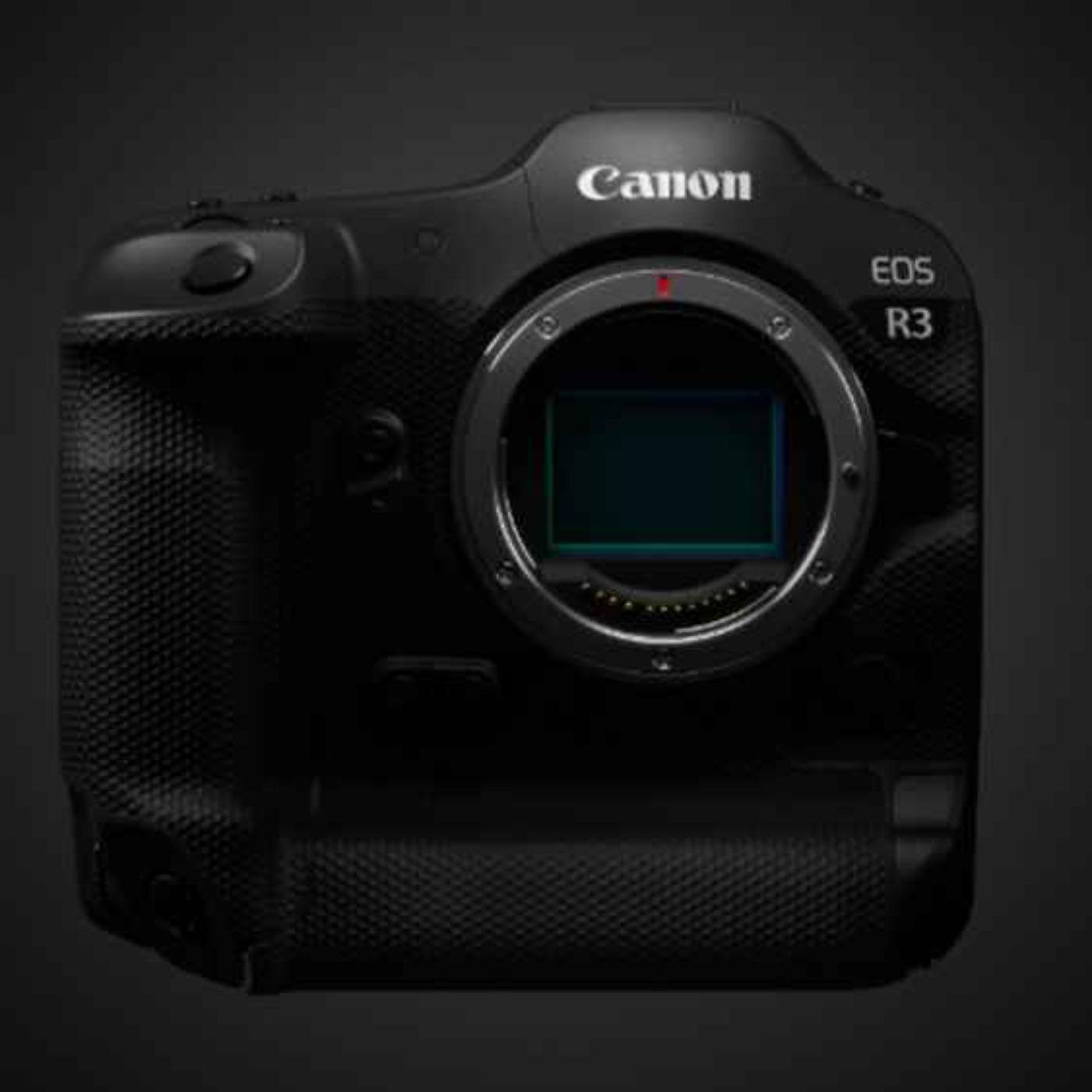 De store 3: Sony A1, Canon R3 & Nikon Z9