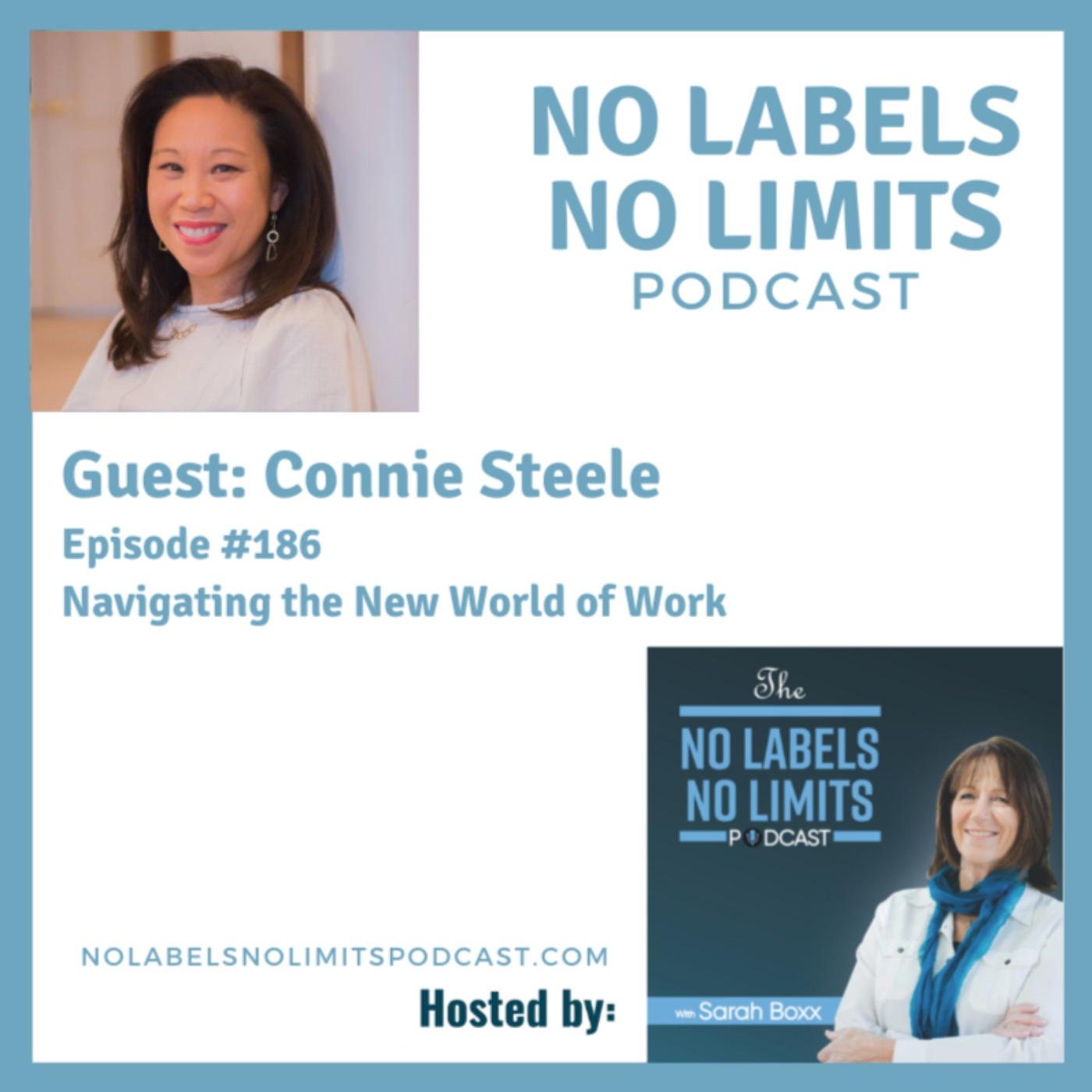186 - Navigating the New World of Work with Connie Steele
