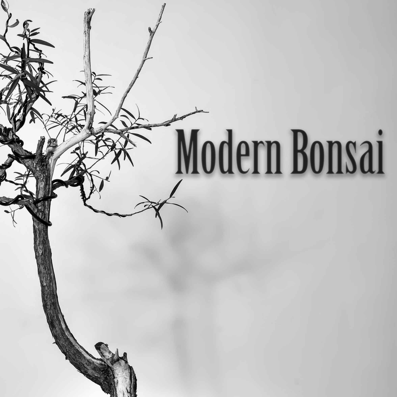 """Modern Bonsai """" Bonsai-En Update """""""