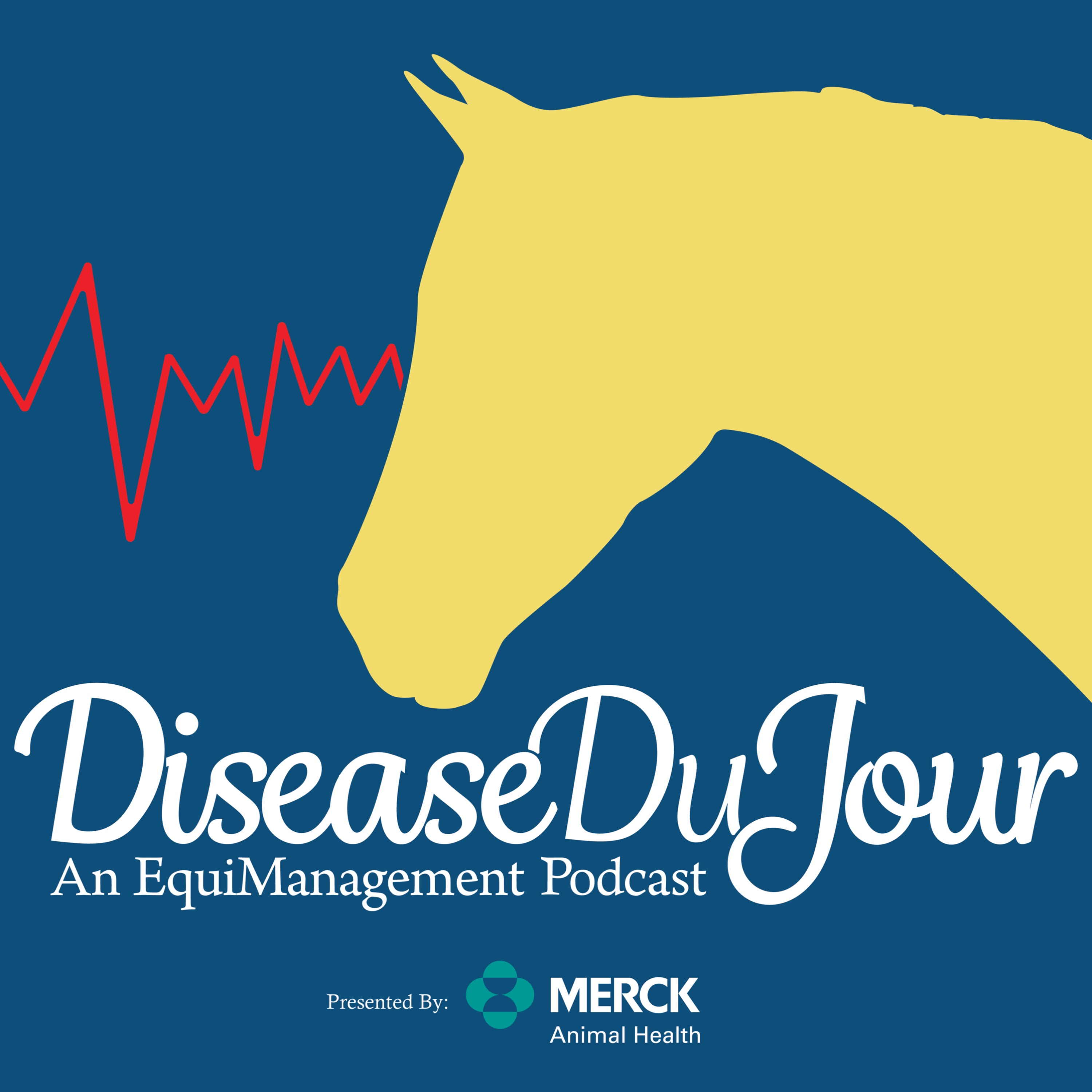 Ep. 50: Equine Nutrition 101 ft. Dr. Clair Thunes