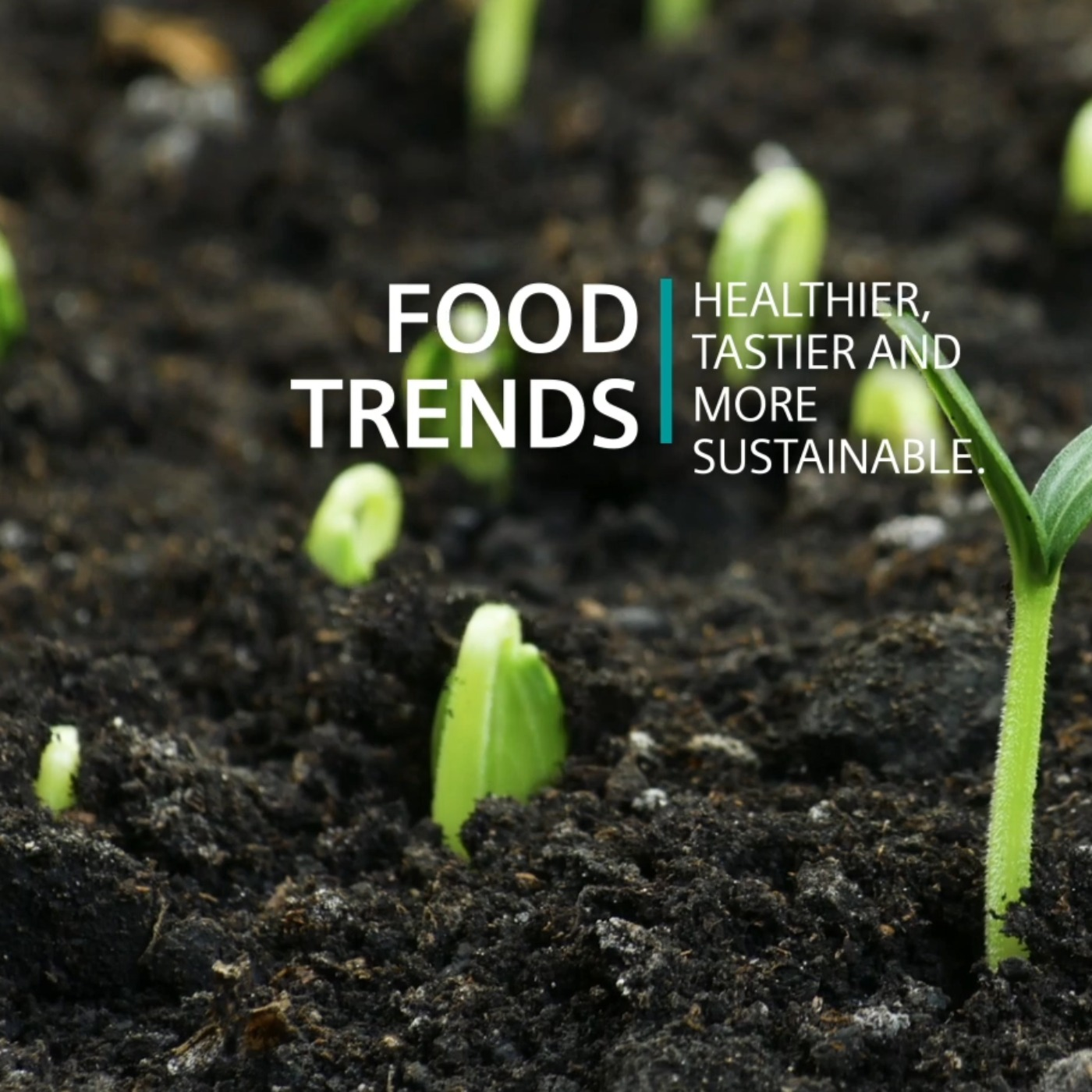 Food trends – healthier, tastier and more sustainable