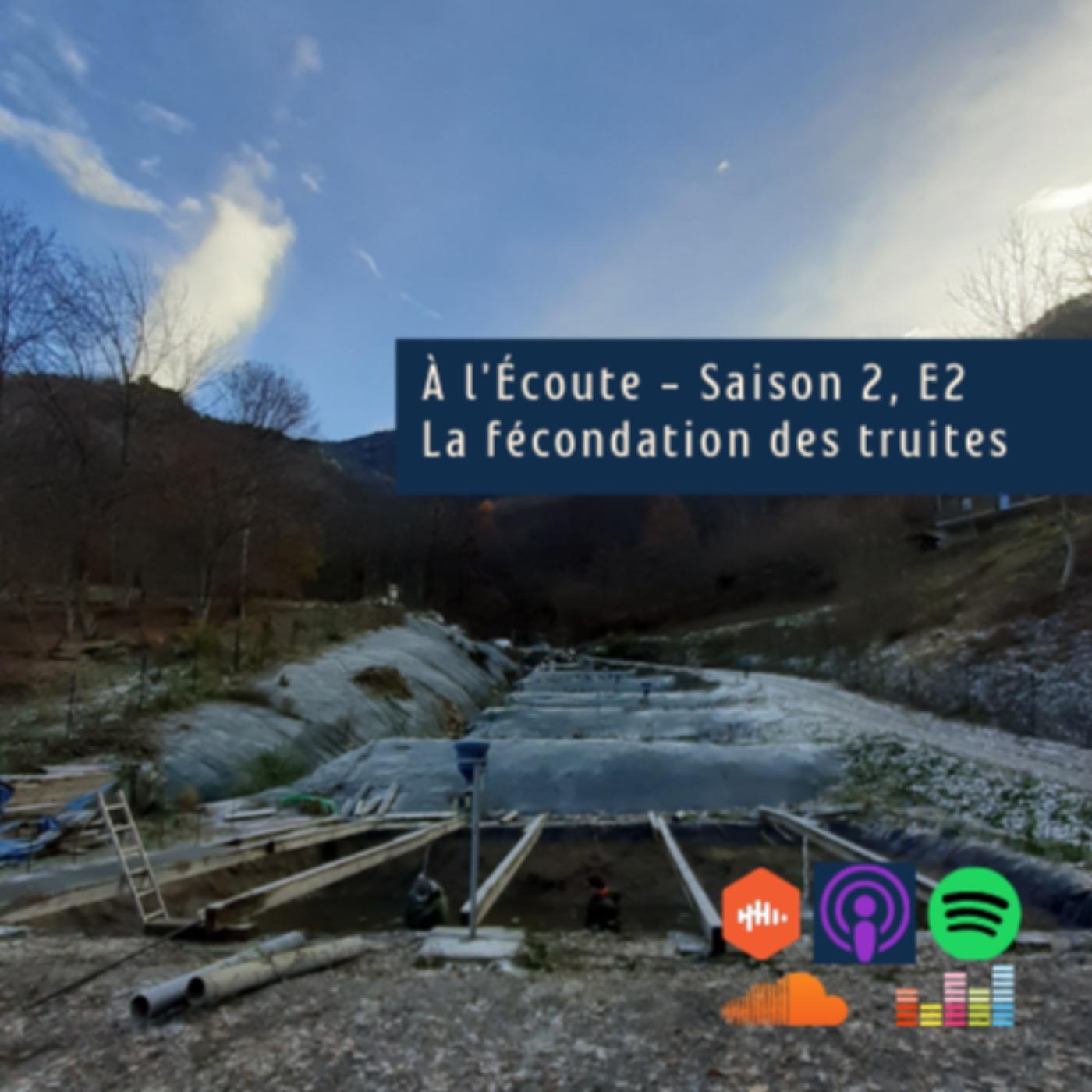 S2 – E2 – La fécondation des truites en Savoie