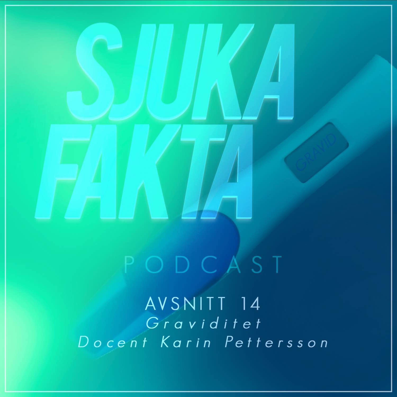 Myter om Graviditet - Docent Karin Pettersson