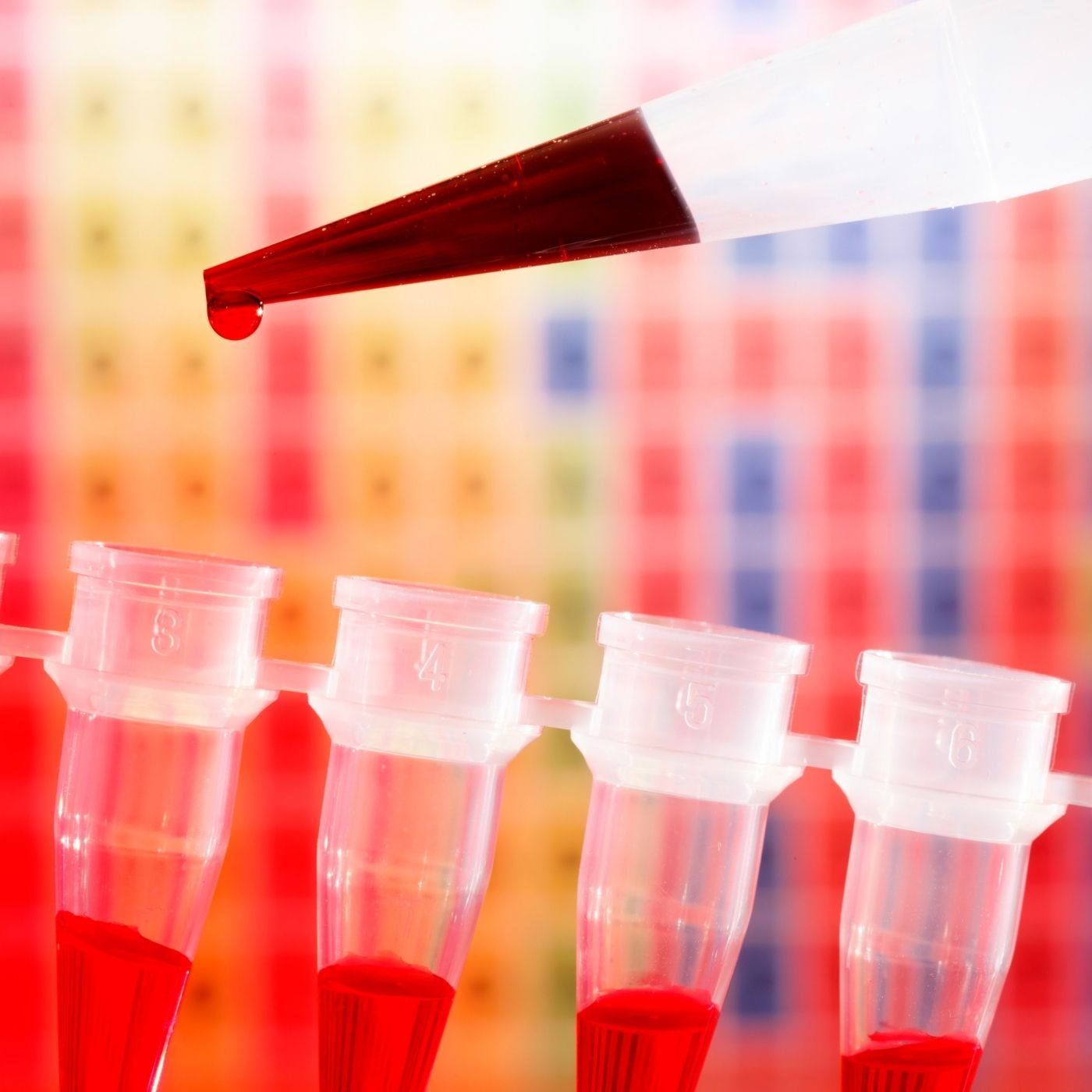 The evolution of PCR: From q to dd and beyond