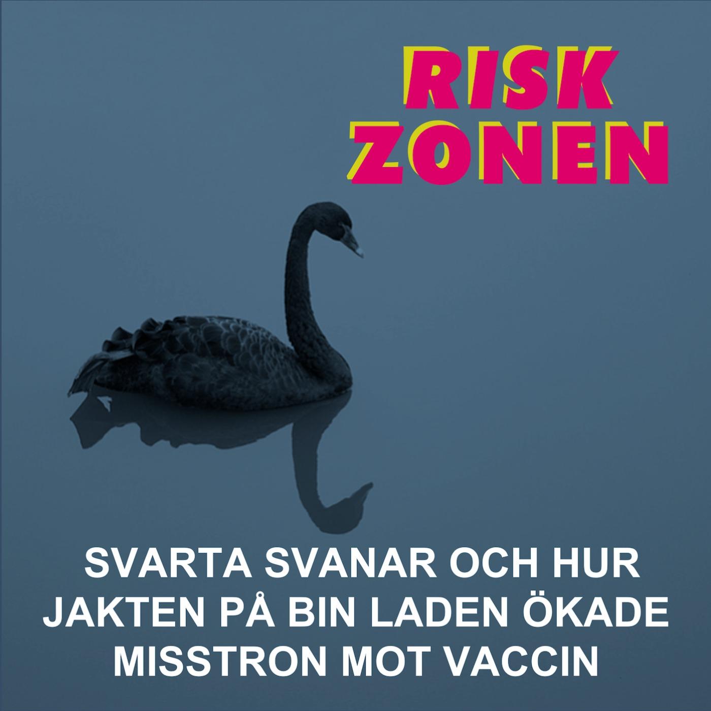Svarta svanar och hur jakten på bin Laden ökade misstron mot vaccin
