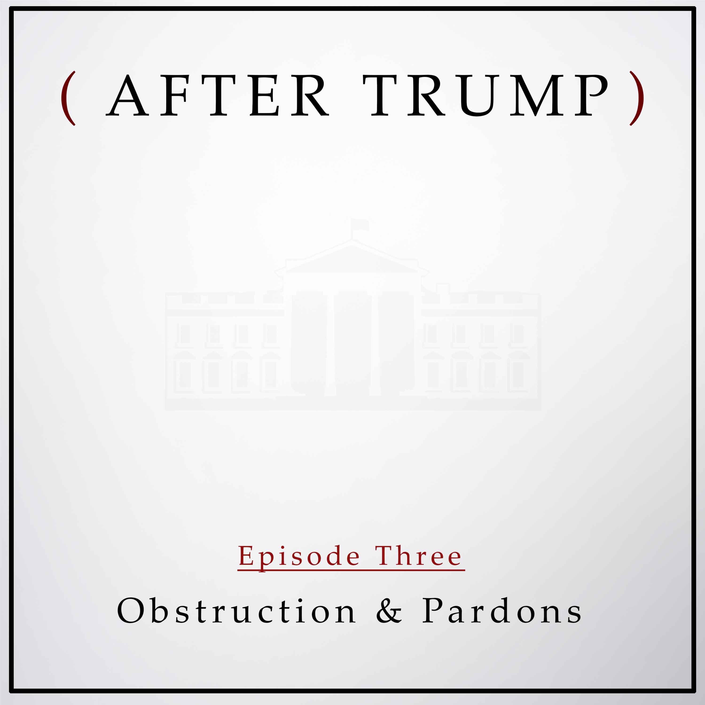 Episode 3: Obstruction & Pardons