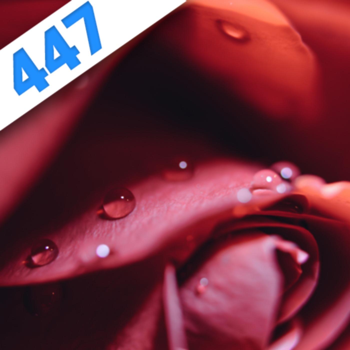 447 – Tribologie  qui s'y frotte s'y mouille !