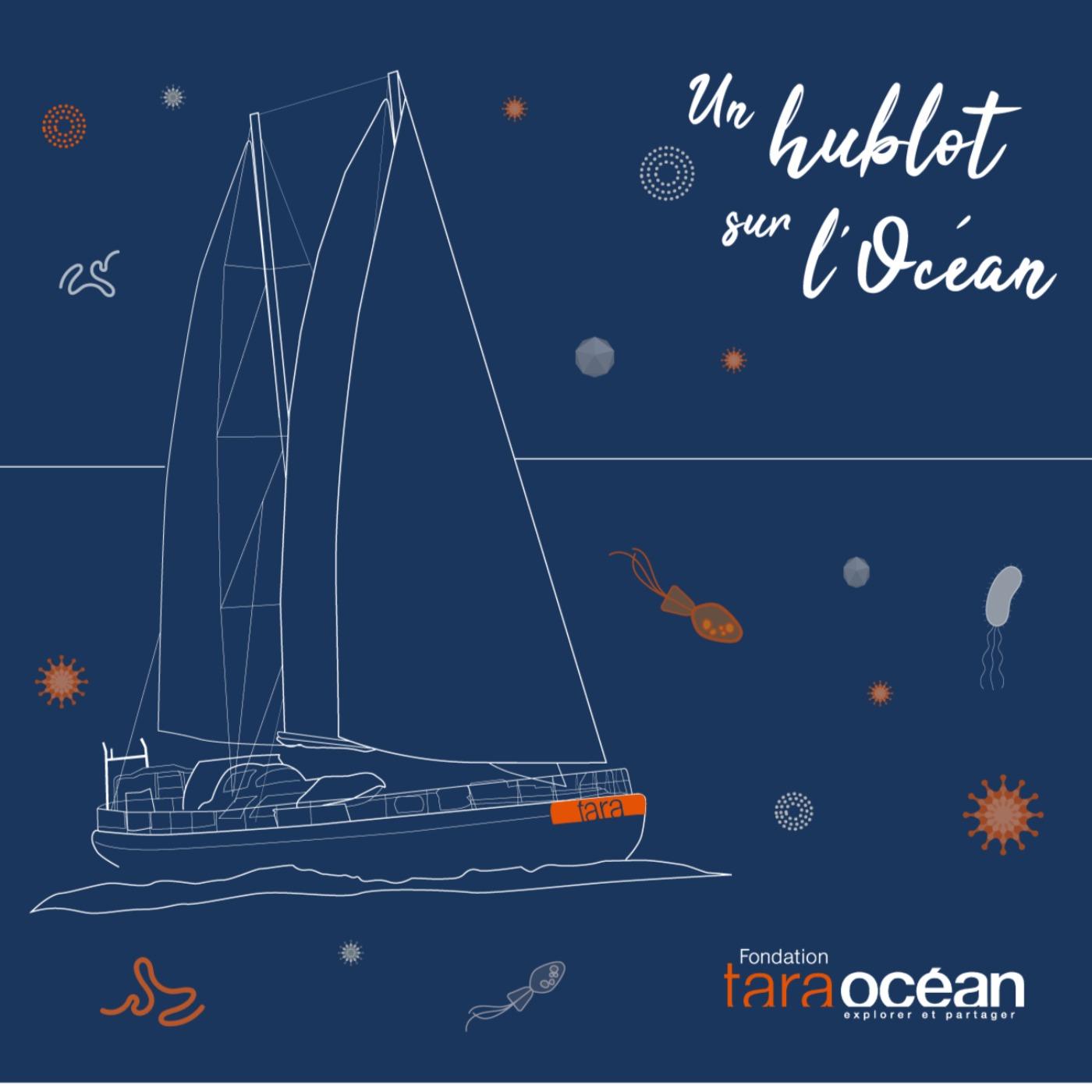 Un hublot sur l'Océan - Fondation Tara Océan