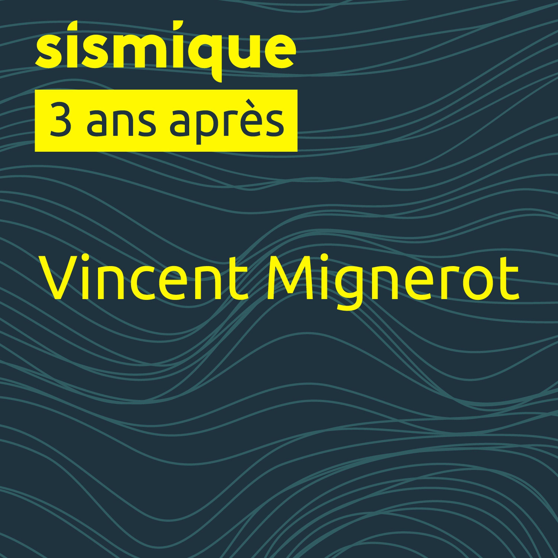 3 ans après - Vincent Mignerot