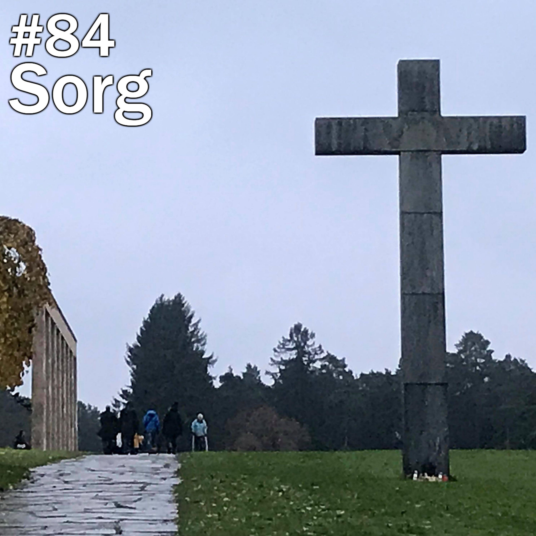 #84 Sorg