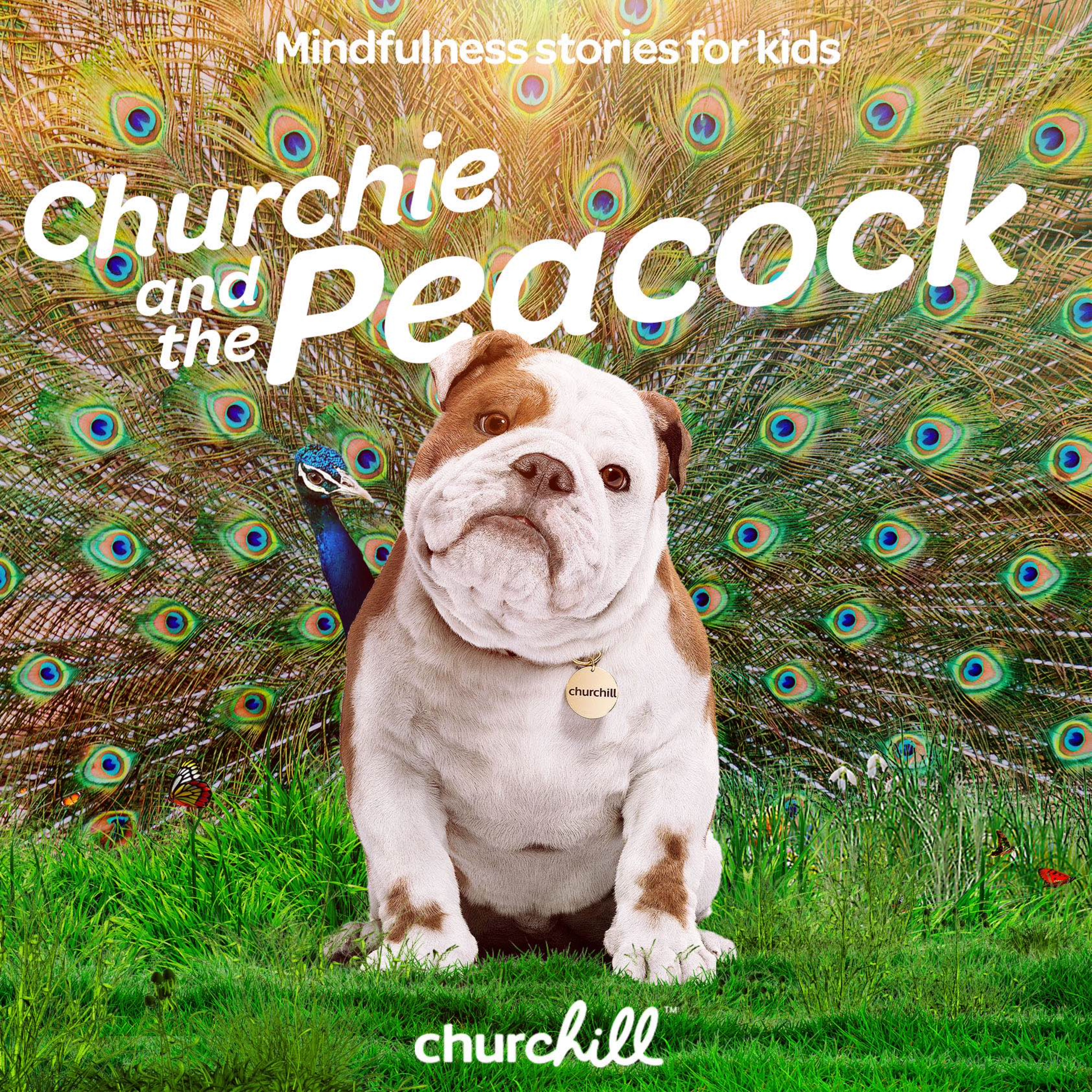 Churchie and the Peacock