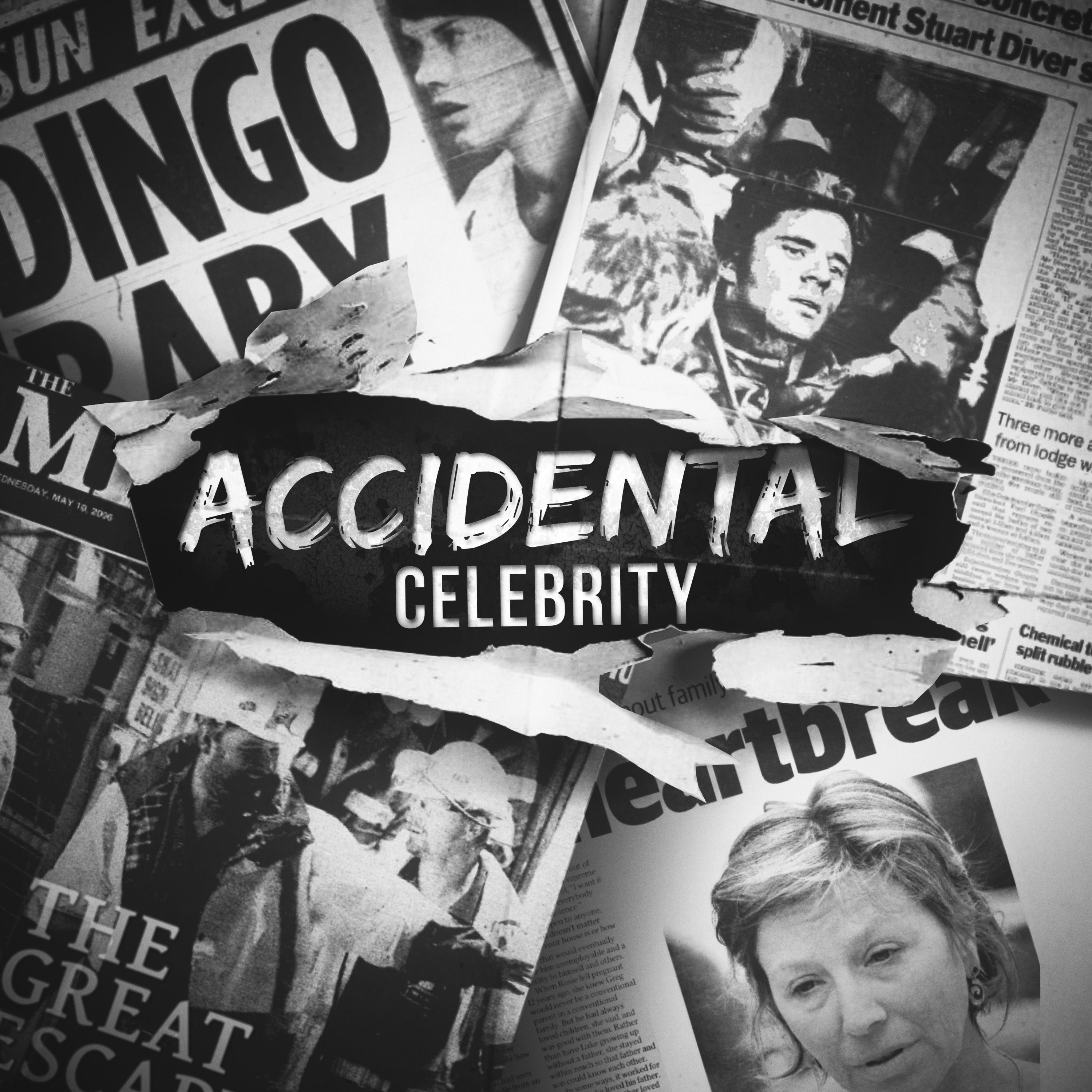 Introducing - Accidental Celebrity