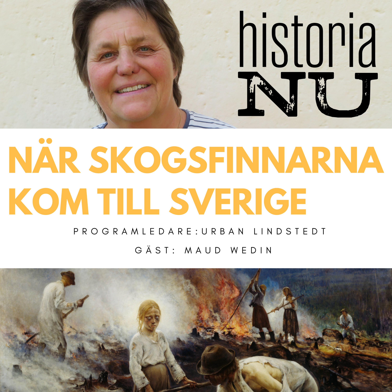 När skogsfinnar koloniserade svenska utmarker